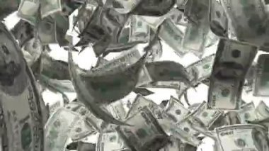 Hundred dollar bills blowing around on white background — Stock Video
