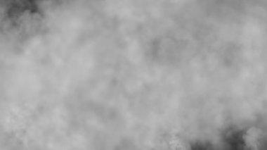 Fog, loop — Stock Video