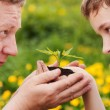 Man and boy holding green plant in hands. — Stock Photo #26662481