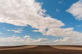 Tierra fresca — Foto de Stock