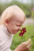 Little Boy Smelling Flower — Stock Photo