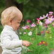 Little Boy Smelling Flower — Stock Photo