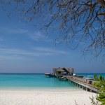 Tropical Beach — Stock Photo #21840615