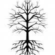 Vector illustration of old tree — Stock Vector