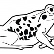 Vector illustration of frog — Stock Vector #35271503