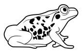 Vector illustration of frog — Stock Vector