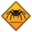 Illustration of tarantula sign — Stock Vector