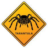 Illustration of tarantula sign — Stock Vector
