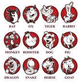 Chinese zodiac — Stock Vector