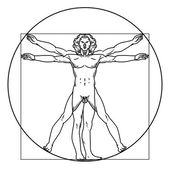 Vector illustration of vitruvian man — Stock Vector