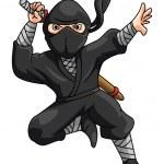 Постер, плакат: Ninja