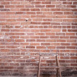 Red brick wall and ladder — Stock Photo #19109045