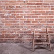 Red brick wall and ladder — Stock Photo #19109059