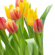 Bunch of Red and Yellow Tulips — Stock Photo
