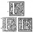Initials - Ornamental Capitals - from antique bible - E — Stock Photo #35012065