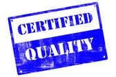 Certyfikat jakości, płyta, ilustrowanych grunge tekstury — Zdjęcie stockowe