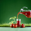 Fresh tomato juice on a background of grass — Stock Photo