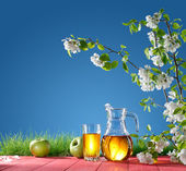 Apple juice on a background of nature — Stock Photo