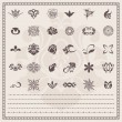 Vector set: Floral and ornamental symbols. Scroll Design elements (borders) - Stock Vector
