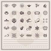 Vector set: Floral and ornamental symbols. Scroll Design elements (borders) — Stock Vector