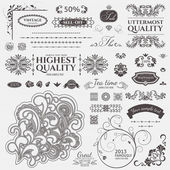 Scroll Design elements. Vector set: Floral and ornamental symbols — Stock Vector