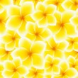 Vector de stock : Plumeria, Frangipani pattern (background) - Asiyellow, white flower. Vector Illustration
