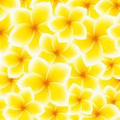 Plumeria, Frangipani pattern (background) - Asian yellow, white flower. Vector Illustration — Stock Vector