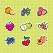 Set of fruits and berries — Stock Vector #18814083