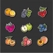 Fruits collection — Stock Vector