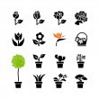 Web icon set -flowers and potted plants in pots — Stock Vector #33882507