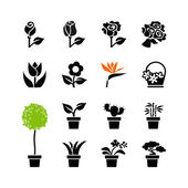 Web icon set -flowers and potted plants in pots — Stock Vector