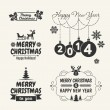 Retro Vintage Christmas set with Typography  — Stock Vector