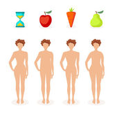 Female body shapes - four types — Stock Vector