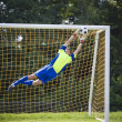 Soccer goalie — Stock Photo #21357431