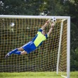 Soccer goalie - Stock Photo