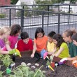 Group of ethnically diverse children planting urban rooftop garden — Stock Photo #21360963