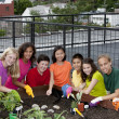 Stock Photo: Group of ethnically diverse children planting urban rooftop garden