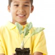 Cute boy holding green plant — Stock Photo #21361093