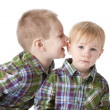Image of two caucasian little brothers — Stock Photo