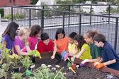 Grupo de niños étnicamente diversos plantar el jardín en la azotea urbano — Foto de Stock