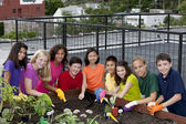 Group of ethnically diverse children planting urban rooftop garden — Stok fotoğraf