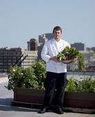 Chef cosecha hierbas desde el tejado del restaurante urbano — Foto de Stock