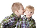 Image of two caucasian little brothers — ストック写真
