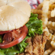 Food and Drink.  Fried chicken sandwich with a side of french fries. - Stock Photo