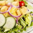 Food and Drink.  Closeup image of a fresh green salad with cucumbers, tomatoes, cheese, onions and croutons - Stock Photo