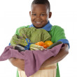 Healthy Eating. African american little boy holding a basket arranged with fresh vegetables — Stock Photo #21373623