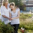 Gardening. Caucasian mother and teenage daughter picking vegetables — Stock Photo