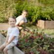 Gardening. Caucasian brothers picking vegetables together — Stock Photo