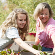 Stock Photo: Gardening. Caucasian mother and her teenage daughter picking vegetables