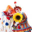 Stock Photo: Clowns. Adult male and female clown couple holding flower